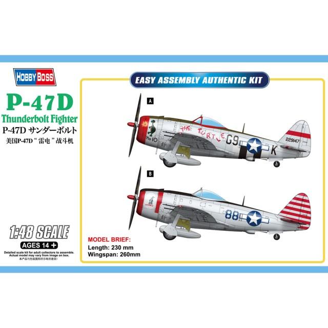 """P-47D """"Thunderbolt"""" Fighter"""