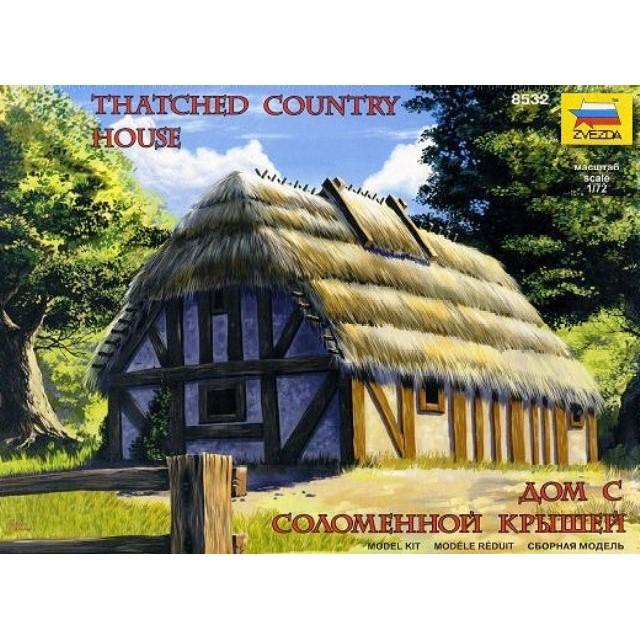Thatched Country House