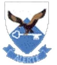 SAAF TFDC Badge Decals.